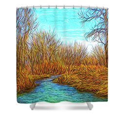 Winter River Breeze Shower Curtain
