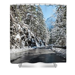 Winter Road Shower Curtain by Sergey Simanovsky