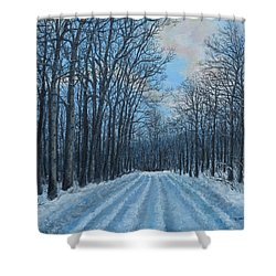 Winter Road To The Gas Well Shower Curtain by Kathleen McDermott