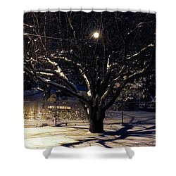 Winter Romace Shower Curtain