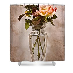 Shower Curtain featuring the photograph Winter Rose by Joan Bertucci