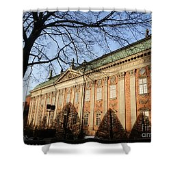 Winter Scene In Stockholm Shower Curtain