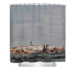 Winter Scented Sand Shower Curtain by Richard Bean