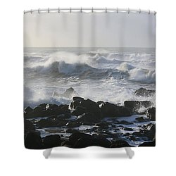 Shower Curtain featuring the photograph Winter Sea by Jeanette French