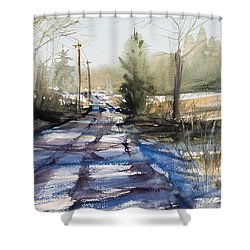Winter Shadows  Shower Curtain by Judith Levins