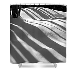 Winter Shadows Shower Curtain