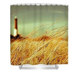 Winter Shore Breeze Shower Curtain