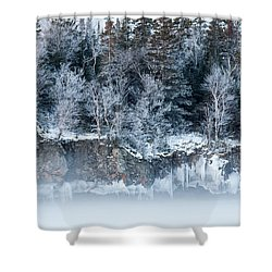 Winter Shore Shower Curtain