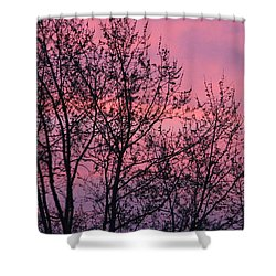 Shower Curtain featuring the photograph Raspberry Winter Skies by Christopher Woods