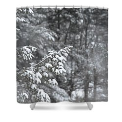 Shower Curtain featuring the photograph Winter Snow by John Black