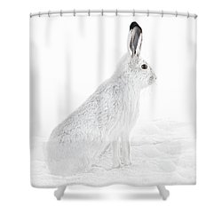 Shower Curtain featuring the photograph  Winter Snowshoe Hare by Jennie Marie Schell