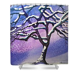 Winter Snowstorm Shower Curtain by Christine Camp