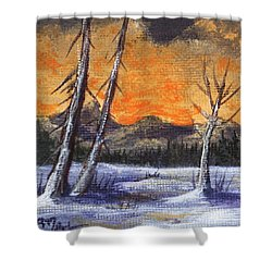 Shower Curtain featuring the painting Winter Solitude #1 by Anastasiya Malakhova