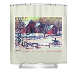 Winter Solitude Shower Curtain