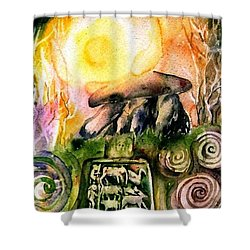 Winter Solstice , Ancient Stones Of Ireland   Shower Curtain by Trudi Doyle