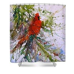 Winter Song Shower Curtain by Sandra Strohschein