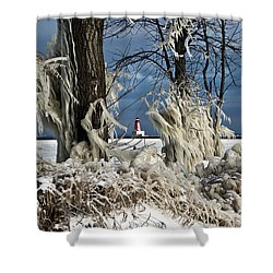 Winter Storm Ashley 2015 #2 Shower Curtain