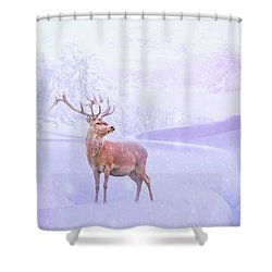 Winter Story Shower Curtain by Iryna Goodall
