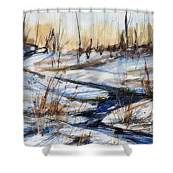 Winter Stream Shower Curtain by Judith Levins
