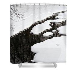 Winter Stream  Shower Curtain
