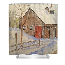 Winter Sugar House Shower Curtain