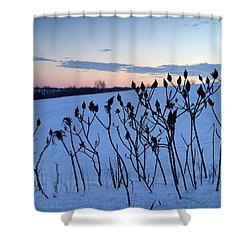 Winter Sumac 2016 Shower Curtain