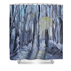 Shower Curtain featuring the painting Winter Sun by Robin Maria Pedrero