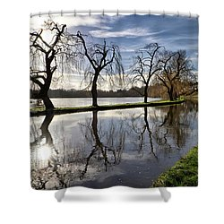 Winter Sun Shower Curtain by Shirley Mitchell