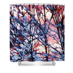 Winter Sunrise Shower Curtain by Betsy Zimmerli