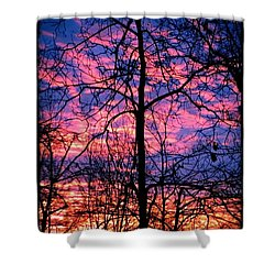 Winter Sunrise Shower Curtain by Betty Buller Whitehead