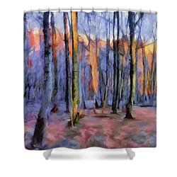 Winter Sunset In The Beech Wood Shower Curtain