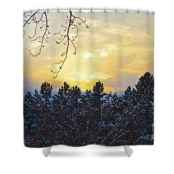 Winter Sunset On The Tree Farm #1 Shower Curtain