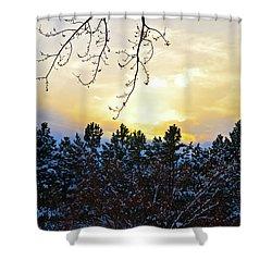 Winter Sunset On The Tree Farm #2 Shower Curtain