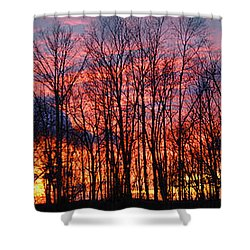 Shower Curtain featuring the photograph Winter Sunset Panorama by Francesa Miller