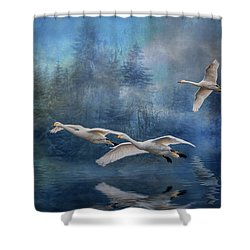 Winter Swans Shower Curtain by Brian Tarr