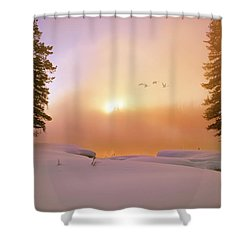 Shower Curtain featuring the photograph Winter Swans by Leland D Howard