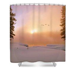 Winter Swans Shower Curtain by Leland D Howard