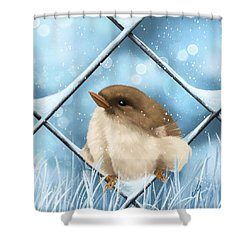 Shower Curtain featuring the painting Winter Sweetness  by Veronica Minozzi