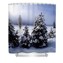 Winter Takes All Shower Curtain