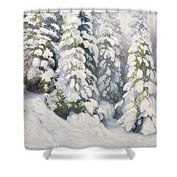 Winter Tale Shower Curtain by Aleksandr Alekseevich Borisov