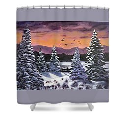 Winter Time Again Shower Curtain