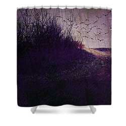 Winter To Spring The Promise Of New Life. Shower Curtain