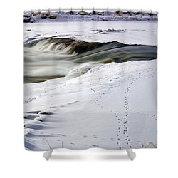 Winter Tracks Shower Curtain