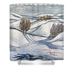 Winter Tranquility Shower Curtain by Rae Chichilnitsky