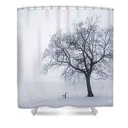 Winter Tree And Bench In Fog Shower Curtain by Elena Elisseeva