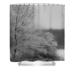 Winter Tree Shower Curtain