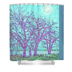 Shower Curtain featuring the digital art Winter Trees In Moonlight Blue - Boulder County Colorado by Joel Bruce Wallach