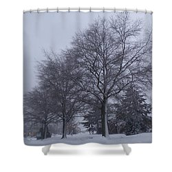 Winter Trees In Sea Girt Shower Curtain