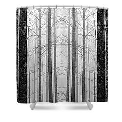 Shower Curtain featuring the photograph Winter Trees by Joye Ardyn Durham