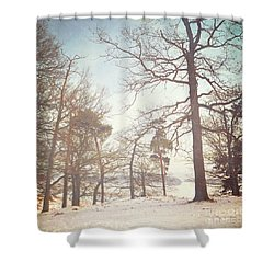 Shower Curtain featuring the photograph Winter Trees by Lyn Randle